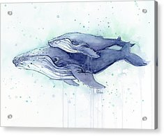 Whales Humpback Watercolor Mom And Baby Acrylic Print