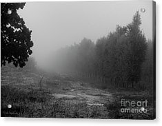 What A Foggy Morning 04 Acrylic Print by Arik Baltinester