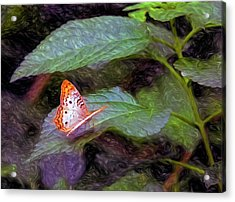 What A Great Place To Live Acrylic Print by James Steele