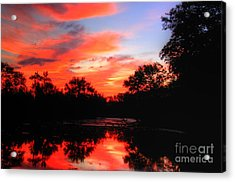 What A Morning 2 Acrylic Print by Robert Pearson