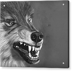 What Big Teeth You Have Acrylic Print by Jessica Kale