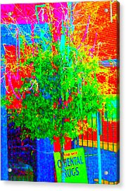 What If We Were Really Meant To Be Happy Acrylic Print by Angela Annas