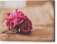 What Is Love? Acrylic Print