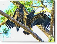 Acrylic Print featuring the photograph What Shall I Say by Deborah Benoit
