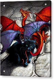 What The Catabat Dragged In Acrylic Print