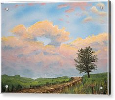 What The Tree Gets To See Acrylic Print by Kenneth McGarity
