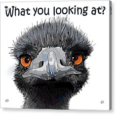 What You Looking At? Acrylic Print