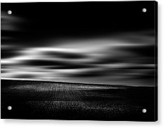 Acrylic Print featuring the photograph Wheat Abstract by Dan Jurak