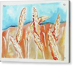 Wheat Field Acrylic Print by Loretta Nash