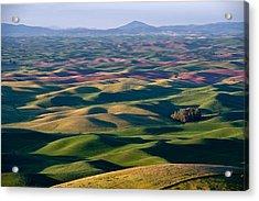 Wheat Fields Of Palouse Acrylic Print by Lee Chon