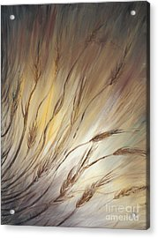 Wheat In The Wind Acrylic Print by Nadine Rippelmeyer