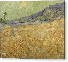 Wheatfield With Reaper Acrylic Print by Vincent Van Gogh