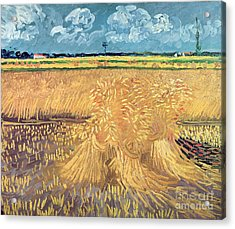 Wheatfield With Sheaves Acrylic Print by Vincent van Gogh