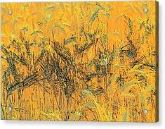 Wheatscape 6343 Acrylic Print