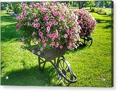 2004 - Wheel Barrow Full Of Flowers Acrylic Print