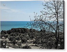 When Black Turns To Blue Acrylic Print by Andrea Mazzocchetti