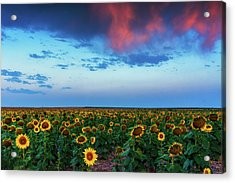 Acrylic Print featuring the photograph When Clouds Dance by John De Bord
