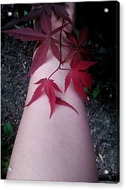 When Life Gives You Japanese Maple Leaves... Acrylic Print