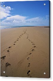 When Our Paths Crossed Acrylic Print