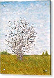 When The Apples Are Gone Acrylic Print by Norman F Jackson