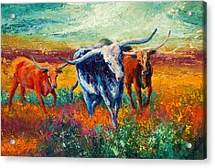 When The Cows Come Home Acrylic Print by Marion Rose