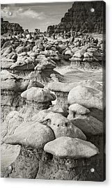 When The Kids Had Killed The Man I Had To Break Up The Band Acrylic Print by Mike McMurray