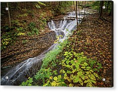 Acrylic Print featuring the photograph When The Leaves Fall by Dale Kincaid