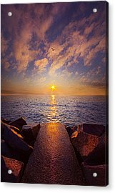 When The Path Ends Ther Real Journey Begins Acrylic Print by Phil Koch