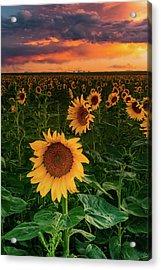 Acrylic Print featuring the photograph When The Sky Sings by John De Bord
