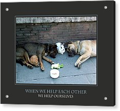 When We Help Each Other Acrylic Print by Donna Corless