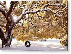 Acrylic Print featuring the photograph When Winter Blooms by Karen Wiles