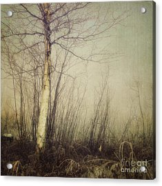 When You Find The One Acrylic Print by Priska Wettstein