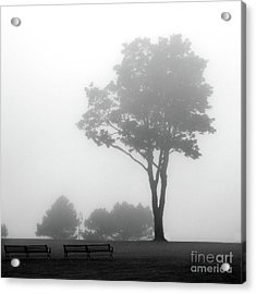 Acrylic Print featuring the photograph Where Do I Go When It's Gone by Dana DiPasquale