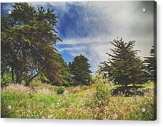 Where Fairies Play Acrylic Print by Laurie Search