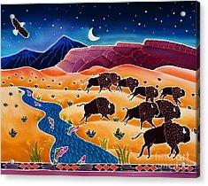 Where The Buffalo Roam Acrylic Print by Harriet Peck Taylor