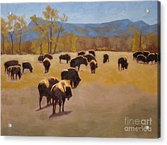 Where The Buffalo Roam Acrylic Print by Tate Hamilton