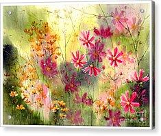 Where The Pink Flowers Grow Acrylic Print