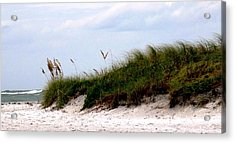 Where The Sea Wind Blows Acrylic Print by Ian  MacDonald