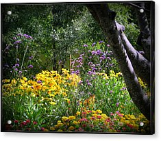 Where The Wild Flowers Grow Acrylic Print by Trina Prenzi