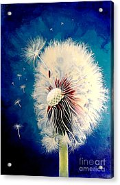 Wherever The Wind Takes Me Acrylic Print