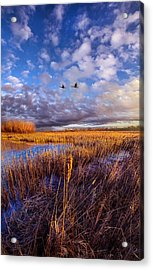 Wherever You Go Becomes A Part Of You Acrylic Print by Phil Koch
