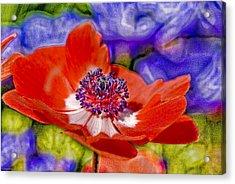 Whimsical Acrylic Print