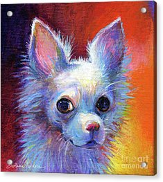 Whimsical Chihuahua Dog Painting Acrylic Print by Svetlana Novikova