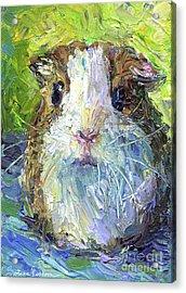 Whimsical Guinea Pig Painting Print Acrylic Print by Svetlana Novikova