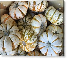 Whimsical Pumpkins Acrylic Print by Russell Keating