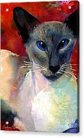 Whimsical Siamese Cat Painting Acrylic Print by Svetlana Novikova