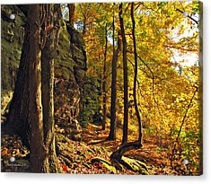 Whipp's Ledges In Autumn Acrylic Print by Joan  Minchak