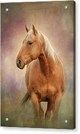 Whiskey Acrylic Print by Debby Herold