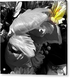 Whisper In My Ear Acrylic Print