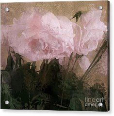 Whisper Of Pink Peonies Acrylic Print by Alexis Rotella